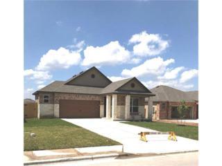 1061 Verna Brooks Way, Kyle, TX 78640 (#9518232) :: Forte Properties