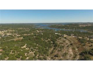 3800 Bob Wire Rd, Spicewood, TX 78669 (#9563837) :: Forte Properties