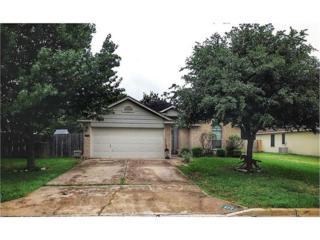 402 Hickory Tree Dr, Georgetown, TX 78626 (#9041211) :: Watters International