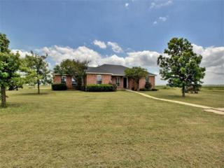 1335 County Road 134, Hutto, TX 78634 (#9466778) :: Forte Properties