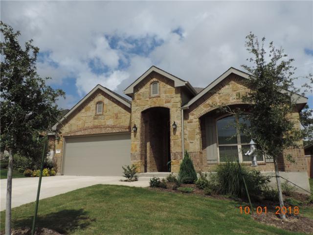 117 Crescent Heights, Georgetown, TX 78628 (#9021410) :: Watters International
