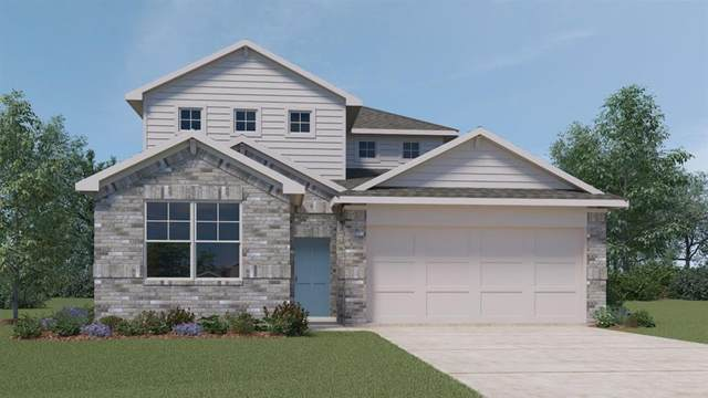 436 Fall Aster Dr, Kyle, TX 78640 (#1000722) :: All City Real Estate