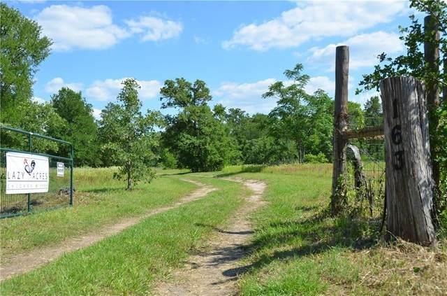 165 Marjess Dr, Cedar Creek, TX 78612 (#1029927) :: The Heyl Group at Keller Williams