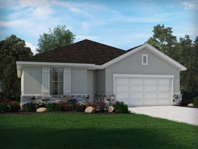 213 Birkshire Dr, Georgetown, TX 78626 (#1031996) :: Ana Luxury Homes