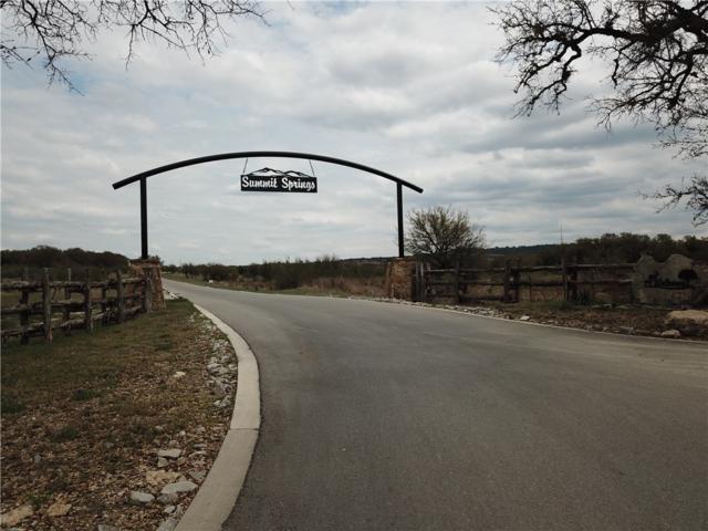 468 Cedar Mountain Dr, Spicewood, TX 78654 (#1034456) :: Realty Executives - Town & Country