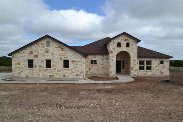 312 First Down Dash, Burnet, TX 78611 (#1042226) :: The Perry Henderson Group at Berkshire Hathaway Texas Realty