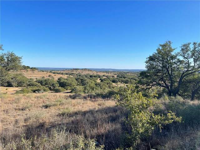 80 Summit Ridge Trl, Johnson City, TX 78636 (#1049026) :: First Texas Brokerage Company