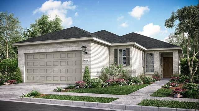 3209 Pisano Ave, Round Rock, TX 78665 (#1054167) :: Watters International