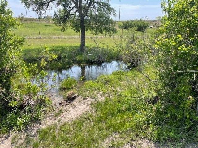 TBD County Road 2323, Lometa, TX 76853 (#1058638) :: The Perry Henderson Group at Berkshire Hathaway Texas Realty