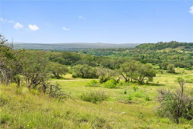 25238 W State Hwy 71 Highway, Spicewood, TX 78669 (#1064063) :: Cord Shiflet Group