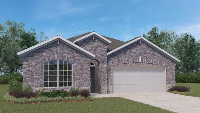 18304 Anicio Gallo Dr, Pflugerville, TX 78660 (#1064646) :: Ben Kinney Real Estate Team