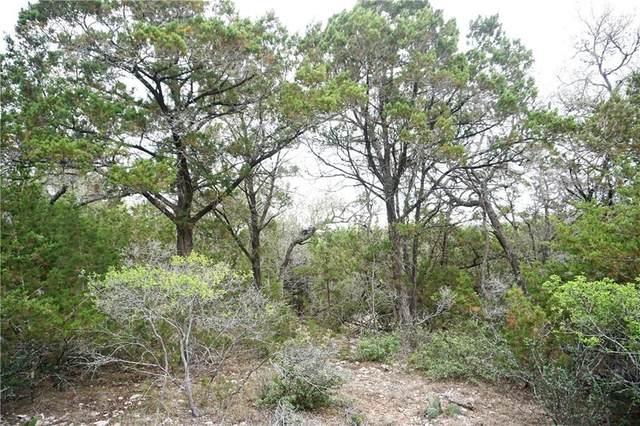 512 Lasso Loop, Canyon Lake, TX 78133 (#1071093) :: Papasan Real Estate Team @ Keller Williams Realty