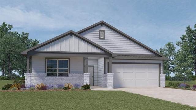 304 Big Sandy Crk, Hutto, TX 78634 (#1084767) :: Realty Executives - Town & Country