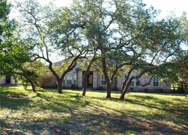 730 Madrone Ranch Trl, Dripping Springs, TX 78620 (#1086610) :: Papasan Real Estate Team @ Keller Williams Realty