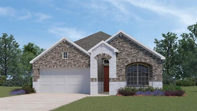 13912 Sage Blossom Dr, Manor, TX 78653 (#1102467) :: Green City Realty