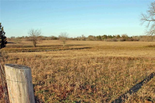 000 Tenney Creek Rd, Luling, TX 78648 (#1108650) :: Watters International