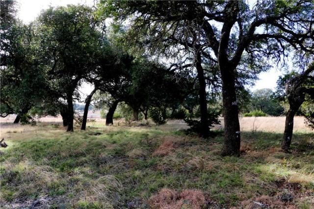 00 S Waterbuck Way, Lampasas, TX 76550 (#1114875) :: Realty Executives - Town & Country