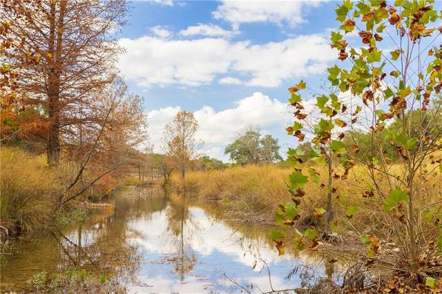 TRACT 10 ACRES Creek Rd, Dripping Springs, TX 78620 (#1115050) :: Lauren McCoy with David Brodsky Properties