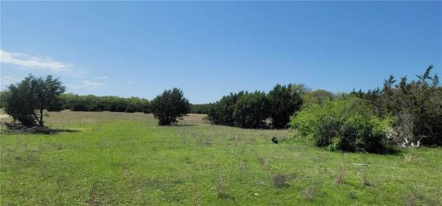 520 County Road 281, Leander, TX 78641 (#1135601) :: RE/MAX IDEAL REALTY