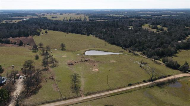 0000 County Road 419, Tanglewood, TX 78947 (#1145360) :: The Gregory Group