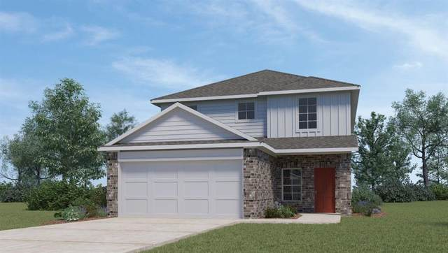 105 Roanwood Dr, San Marcos, TX 78666 (#1152212) :: Azuri Group | All City Real Estate