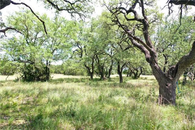 TBD Medlin Creek Loop, Dripping Springs, TX 78620 (#1153188) :: The Perry Henderson Group at Berkshire Hathaway Texas Realty