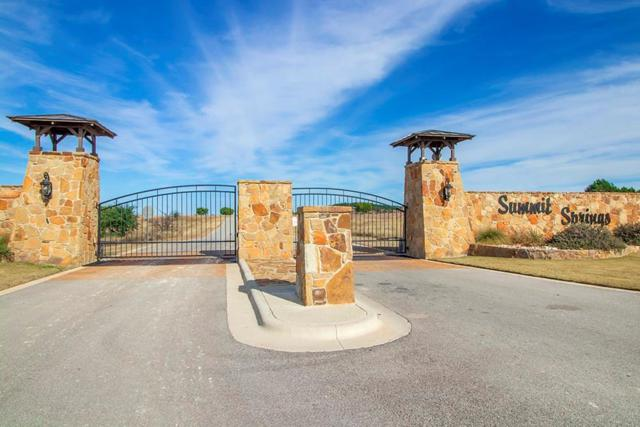 Lot 223 Rolling Waters Ct, Marble Falls, TX 78654 (#1158549) :: The Perry Henderson Group at Berkshire Hathaway Texas Realty
