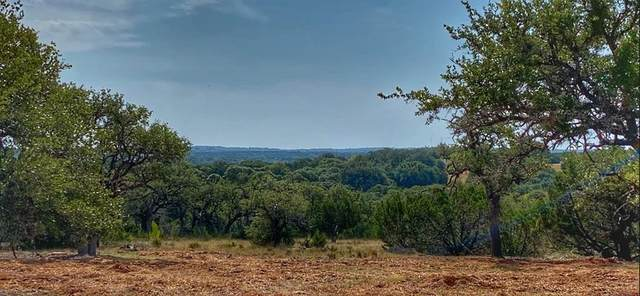 5410 Ranch Road 1376, Luckenbach, TX 78624 (#1164651) :: The Perry Henderson Group at Berkshire Hathaway Texas Realty