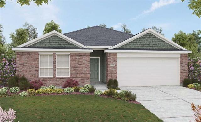 316 Sassafras Rds, Hutto, TX 78665 (#1167106) :: Papasan Real Estate Team @ Keller Williams Realty