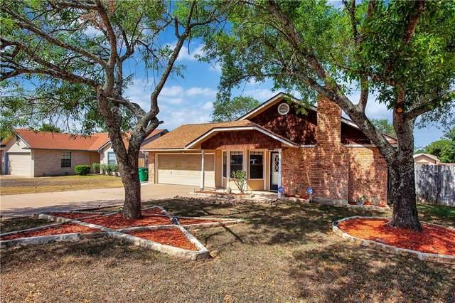 1016 York Castle Dr, Pflugerville, TX 78660 (#1185701) :: Papasan Real Estate Team @ Keller Williams Realty