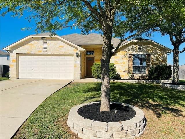 146 Desert Springs Cv, Buda, TX 78610 (#1193100) :: Zina & Co. Real Estate
