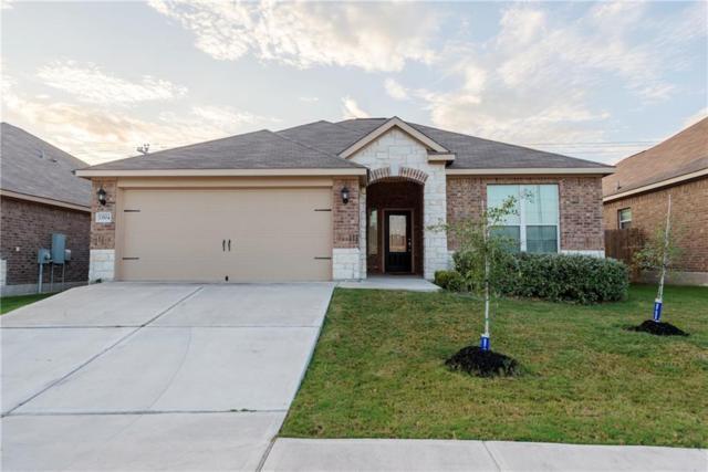 13504 Clara Martin Rd, Manor, TX 78653 (#1198199) :: The Heyl Group at Keller Williams