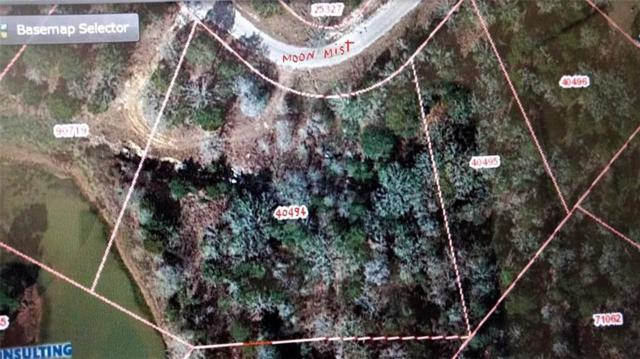 TBD Moon Mist Dr, Bastrop, TX 78602 (#1199180) :: The Perry Henderson Group at Berkshire Hathaway Texas Realty