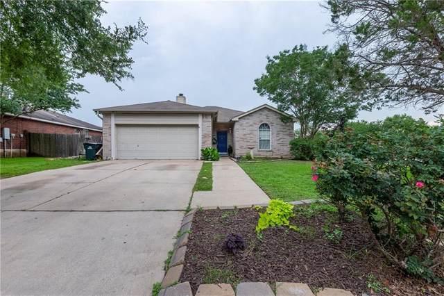 275 Jerry Lees Trl, Kyle, TX 78640 (#1203425) :: Ben Kinney Real Estate Team