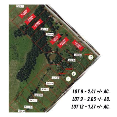 Lot 12 Brown Rd, Mcdade, TX 78650 (#1205788) :: The Perry Henderson Group at Berkshire Hathaway Texas Realty