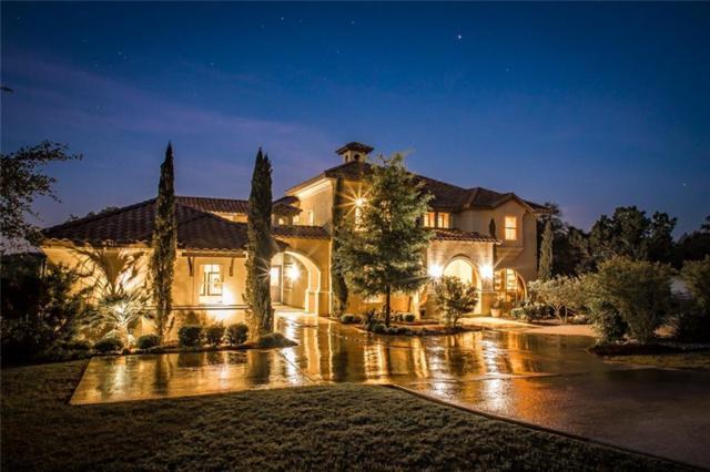 217 Copper Trce, New Braunfels, TX 78132 (#1206003) :: Forte Properties