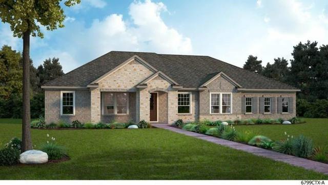 294 Call Dr, Austin, TX 78737 (#1240776) :: Papasan Real Estate Team @ Keller Williams Realty