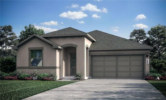 405 Coba Street, Leander, TX 78641 (#1251444) :: The Heyl Group at Keller Williams