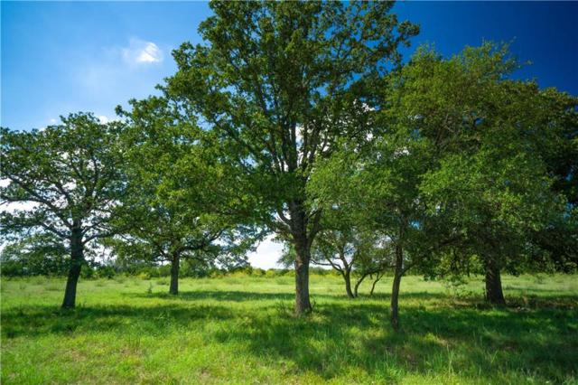 Tract 16 Cross Creek Rd, Georgetown, TX 78628 (#1263189) :: Papasan Real Estate Team @ Keller Williams Realty