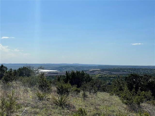 21501 Bison Trl, Lago Vista, TX 78645 (#1270145) :: The Summers Group
