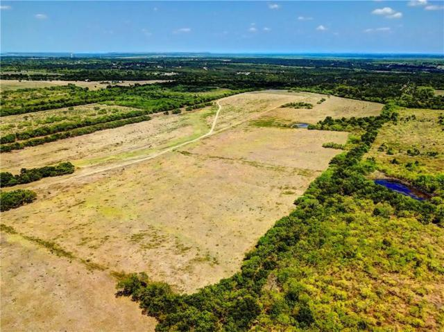 592 Homann Rd, Lockhart, TX 78644 (#1274791) :: The Perry Henderson Group at Berkshire Hathaway Texas Realty