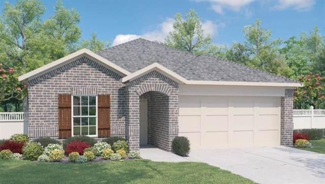14911 Breccia Rd, Manor, TX 78653 (#1281296) :: Watters International