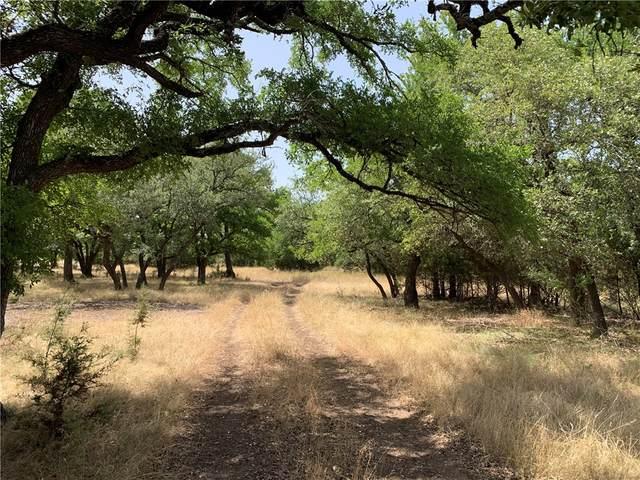 1700 County Road 219, Briggs, TX 76508 (#1298763) :: First Texas Brokerage Company