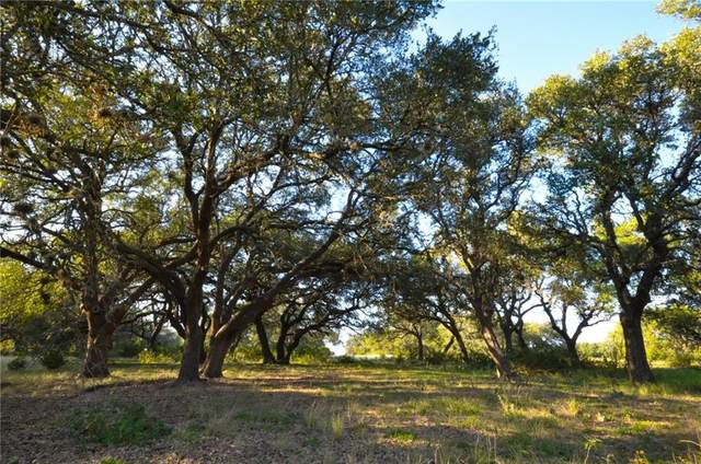 100 Ranch Road 165, Dripping Springs, TX 78620 (#1310480) :: Zina & Co. Real Estate
