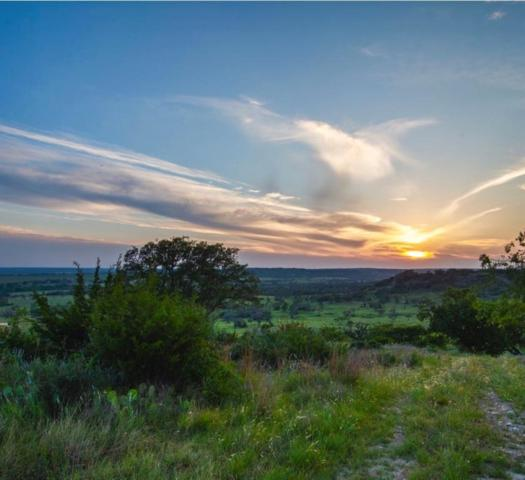 7196 Fm 2093 Lot # 41, Fredericksburg, TX 78624 (#1315168) :: Papasan Real Estate Team @ Keller Williams Realty