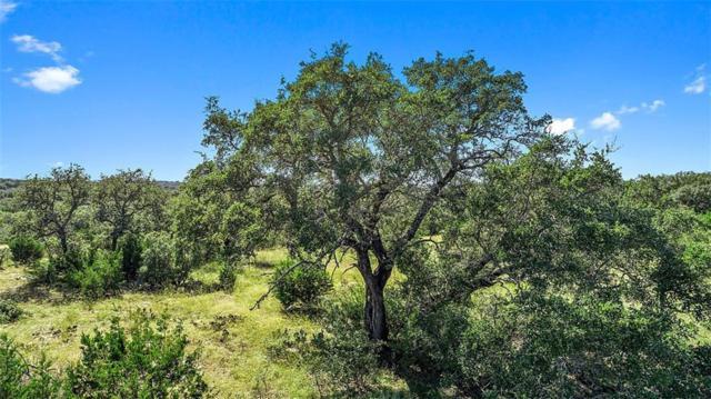 000 Trail Rock Rd, Johnson City, TX 78636 (#1318868) :: Papasan Real Estate Team @ Keller Williams Realty