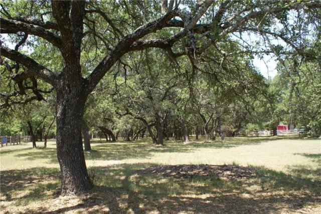 Lot 72 Saddletree Ln, Dripping Springs, TX 78620 (#1327283) :: The Heyl Group at Keller Williams
