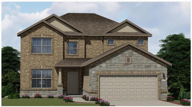 4205 Dutchman Dr, Pflugerville, TX 78660 (#1327604) :: Ana Luxury Homes