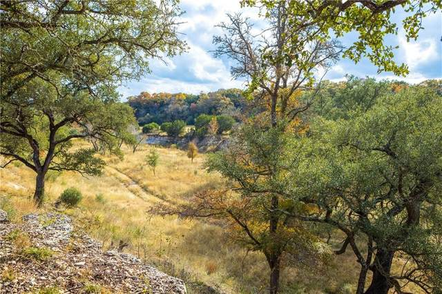 7215 Creek Rd, Dripping Springs, TX 78620 (#1337207) :: The Perry Henderson Group at Berkshire Hathaway Texas Realty