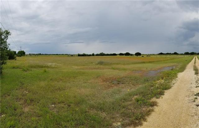 1450 County Road 221, Florence, TX 76527 (MLS #1344003) :: Vista Real Estate